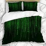 Juegos de fundas nórdicas Matrix Green Code Falling Números aleatorios Movimiento Datos abstractos Hexagonal digital Binario Negro Ropa de cama de microfibra decodificada con 2 fundas de almohada Cuid
