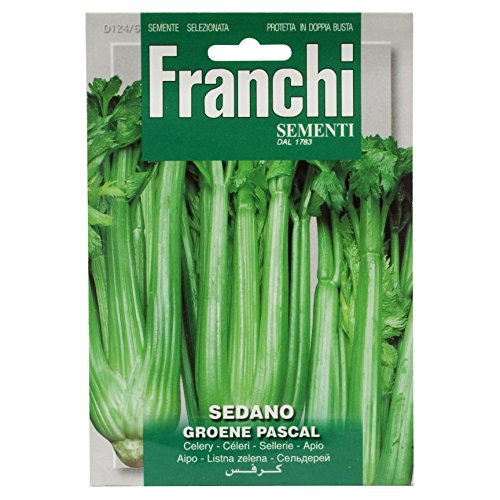 Seeds of Italy Ltd. Franchi Graines de céleri Vert Pascal