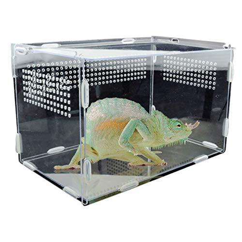 Terrarien für Reptilien Amphibien,Reptilien Zuchtbox Transparente Reptilienbox Fütterungsbox aus Acryl Terrarium,Reptil Zuchtfall für Spide, Eidechse,Skorpion,Tausendfüßler (XL-33.5*18*20cm)