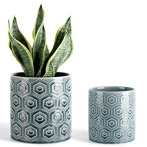 Greenaholics Hexagon Pattern Ceramic Planters - 5 + 6 Inch Plant Pots with Drainage Hole, Flower Plant Container for Indoor Outdoor, Set of Two, Blue