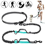 SHINE HAI Retractable Hands Free Dog Leash with Dual Bungees for Dogs up to 150lbs, Adjustable Waist Belt, Reflective Stitching Leash for Running Walking Hiking Jogging Biking