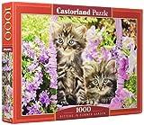 Castorland CSC104086 Kittens in Summer Garden, 1000 Tei Puzzle, Bunt