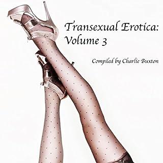 Transexual Erotica, Volume 3 cover art