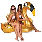 Poolcandy Giant Animal Pool Float, Golden Swan
