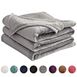 LIANLAM Queen Size Fleece Blanket Lightweight Super Soft and All Season Warm Fuzzy Plush Cozy Luxury Bed Blankets Microfiber (Grey, 90'x90')