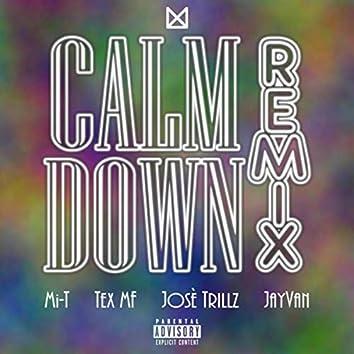 Calm Down (Remix) [feat. Tex Mf, Josè Trillz & Jayvan]