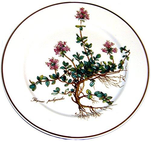 Villeroy & Boch Botanica Frühstücksteller 21cm 10-2334-2640