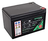 PATONA Premium AGM 12V 12Ah Blei Batterie VRLA Wartungsfrei 1800 Zyklen - (6406)