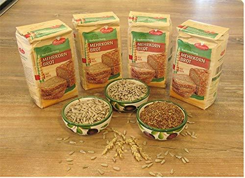Leguana Handels GmbH 4-er Set Brotbackmischungen Mehrkornbrot- insgesamt 4X 750g Brot, incl. Bio Sonnenblumenkernen + Leinsamen