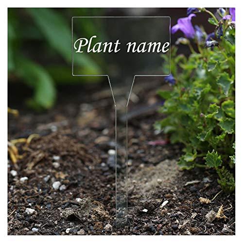 Bütic GmbH Acryl plantenborden vierkant kleurloos - weerbestendig en elegant, kruidenborden, plantenpluggen - veel plantennamen of eigen tekst Oregano