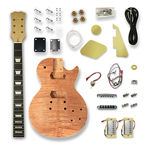 DIT Electric Guitar Kits For LP Guitar