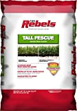 Best Fescue Grass Seeds - Pennington Rebel Tall Fescue Mixture Powder Coated Seed Review