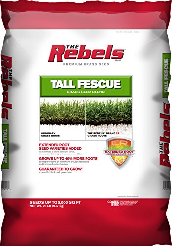 Pennington Rebel Tall Fescue Mixture Powder Coated Seed, 20 lb.
