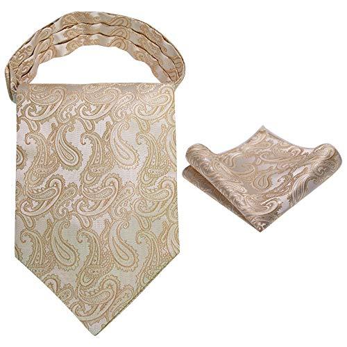RBOCOTT Paisley Schwarz Ascot Cravat für Herren Krawatten und Einstecktuchset(5)