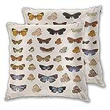 Intage Scientific Kissenbezug, 2er-Set, mit Insekten, Schmetterling, Motte, biologisch, dekorativ, beidseitig bedruckt, für Couch, Bett, Wohnzimmer, 45,7 x 45,7 cm