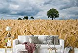 Vlies Fototapete Fotomural - Wandbild - Tapete - Weizenfeld Bäume Wolken - Thema Wiesen und Landschaft - XL - 368cm x 254cm (BxH) - 4 Teilig - Gedrückt auf 130gsm Vlies - FW-1065V8