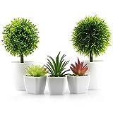 5 x kleine Kunstpflanzen, Mini-Topfpflanzen-Set mit weißem Kunststoff-Topf, 3 x künstliche Sukkulenten und 2 x künstliche Grünpflanzen, für Zuhause, Büro, Schreibtisch-Dekoration