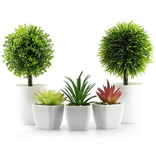 Set mit 5 kleinen Kunstpflanzen, Mini-Topfpflanzen mit weißem Kunststoff-Topf, 3 künstliche Sukkulenten und 2 künstliche Grünpflanzen, für Zuhause, Büro, Schreibtisch-Dekoration