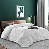 Basic Beyond Lightweight Down Comforter