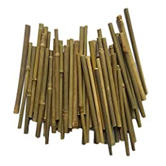 Material: bamboo.Color: Green. Diameter: approx. 0.3-0.5cm. Length: approx. 12.7cm.With fine cutting on both sides. Pack of 100,This package of 100 sticks gives you plenty of crafting options. Bamboo sticks perfect for crafts,home decor,garden and pl...