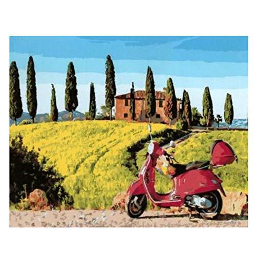 Hyllbb DIY ölgemälde Landschaftsmotorrad Diy Digitale Farbtonfarbe Durch Zahlenwandkunstmalereien Für Das Wohnzimmer Handgemalt Auf Segeltuchhauptdekor-40 *...