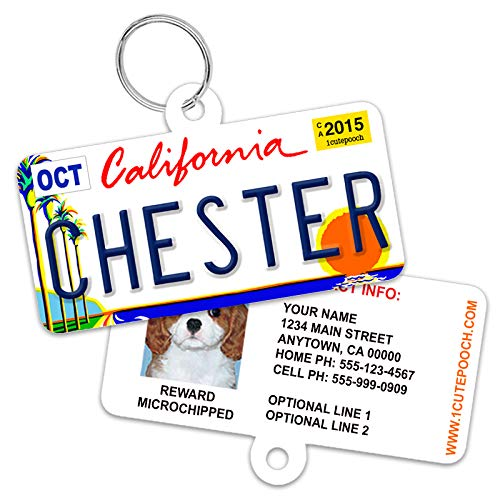 1 Cute Pooch License Plate Custom Dog Tags for Pets - Personalized Pet ID Tags - Available for All 50 States - Dog Tags for Dogs - Dog ID Tag - Personalized Dog ID Tags - Cat ID Tags - with Pet Photo