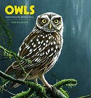 Owl 2020 Calendar: Paintings by Jeremy Paul