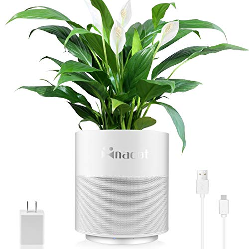 Self Watering Planter Pot for Indoor Plants, NaCot 2020 Newest 2-in-1 Plant Succulent Pot and Quite Dehumidifier with 70ML Water Tank, Electric Small Flower Pot for Succulents Indoor Gardens