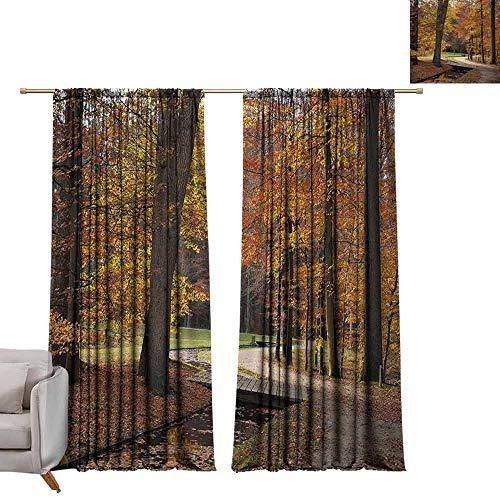 Tr.G venster verduisteringsgordijnen voor kamer donkere panelen voor woonkamer slaapkamer herfst, herfst seizoen paddestoelen kastanjes met hand getrokken bladeren aquarel ontwerp, Multi kleuren