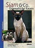 Siam & Co. Orientalische Katzen: Orientalische Katzen (Heimtiere)