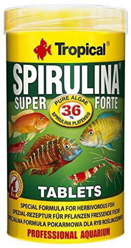 Tropical Super Spiru Tabin A Hafttabletten mit 36% Spirulina (platensis) Algen, 1er Pack (1 x 250 ml)
