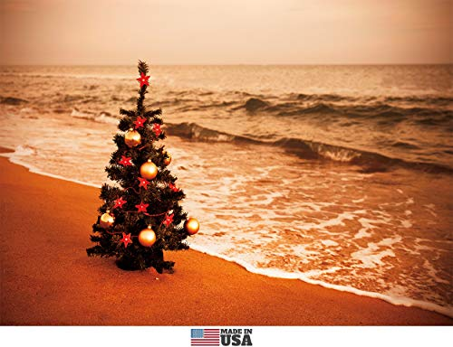 Christmas Tree on the Beach, Christmas Cards Boxed Set of 12 Holiday Cards and 12 Envelopes. Made in USA.