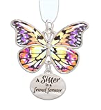 Ganz 2' Beautiful Zinc Butterfly Ornament with Sentiment Featuring White Organza Ribbon for Hanging (Sister)