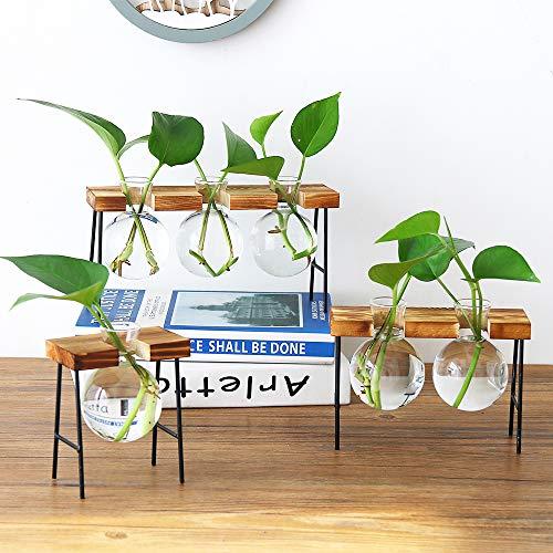 SUNJULY Jarrón hidropónico de cristal con soporte de madera y hierro, decoración para el jardín de casa, boda, salón, estantería, cafetería.