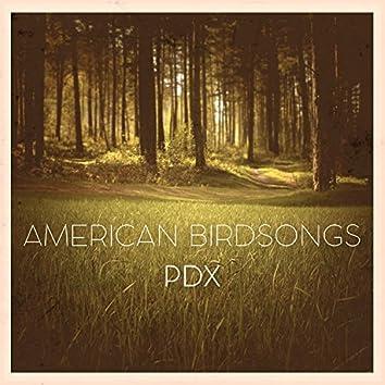 American Birdsongs