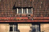新しいJSCTWCLジグソーパズル大人のための1000個-古い屋根付きの家-エンターテインメント木製パズルおもちゃ