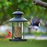 Birdream Bird Feeders for Outdoors Hanging, Metal Bird Feeder Outdoor Waterproof Wild Bird Feeders Hanging for Garden Yard Decorations