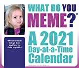 2021 What Do You Meme? Day-at-a-Time Box Calendar