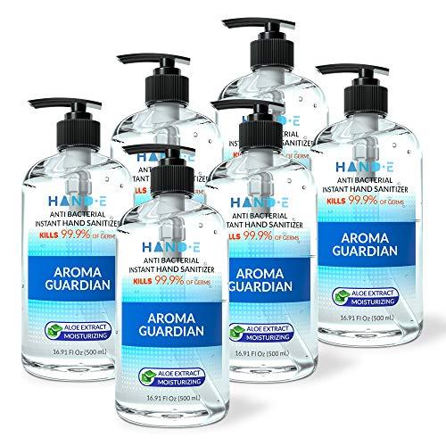 Hand-E Hand Sanitizer Gel Pump - 6 Pack, 16 oz Large Pump Bottle - 75% Ethyl Alcohol Based Instant Sanitizing Gel With Moisturizing Aloe - Kills 99.9% of Germs - Rinse Free