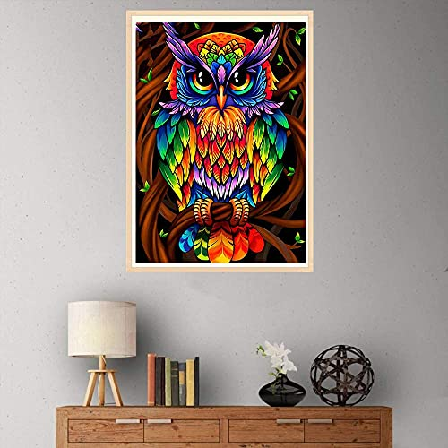 FLAIGO DIY 5D Diamond Painting by Number Kits, Full Drill Resin Diamond Cross Stitch Crystal Rhinestone Embroidery Pictures Arts Craft for Home Wall Decor Gift -11.8 x 15.7 Inch (Owl)