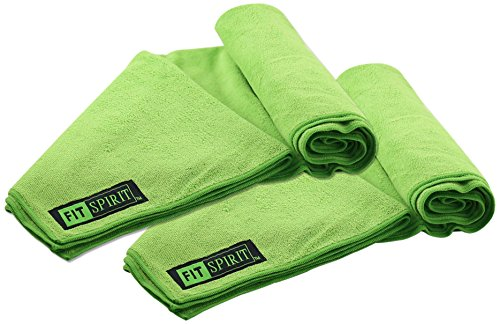 /p h3Fit Spirit Super Absorbent Non Slip Skidless Sport Towels Pack of Two/h3 p