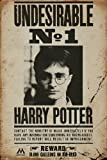 Harry Potter Maxiposter, Holz, Undesirable No 1, 61 x 91,5