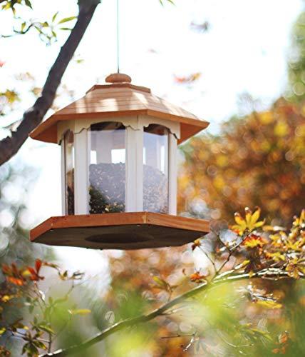 Mangeoire à Oiseaux Hanging Park Gazebo pour Le Jardin   Belle Station d'alimentation d'oiseaux de pergola de tonnelle de carrousel Hexagonal Rond