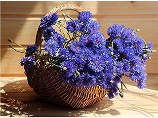 Sunnymi The NewDiy Diamond Embroidery 5D Diamond Mosaic Bodegón con Flores de Pintura Azul Diamante Flores Nuevo Punto de Cruz Taladro Redondo de Costura, 45 * 60 cm