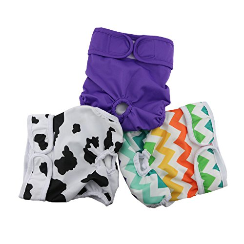 Hi Sprout Female Dog Diaper Reusable Washable Durable Absorbent Cloth Doggie Diapers Pants l2