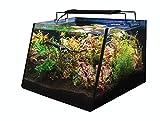 Lifegard Aquatics R800200 Full-View 5 Gallon...