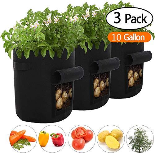 Lytrek 3 Pack Kartoffel Pflanzsack 10 Gallonen,Pflanzsack mit Griffe aus Filzstoff Pflanze Grow Bag für Tomaten,Blumen,Pflanzen und Mehr