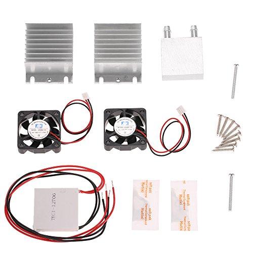 Cella di Peltier Thermoelectric Cooler,Peltier Freddo Piastra Modulo Kit PC CPU 12V,60W,5.8A Condotto del Dispersore Di Calore + 2 Ventilatori + 2 TEC1-12706