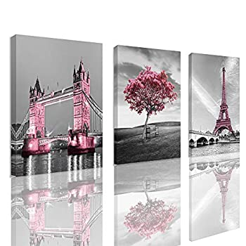 Decor for Bedroom for Girls Pink Paris Theme Room Decor Wall Art Canvas Black and White Art Eiffel Tower Pictures Decorations Tower Paris Eiffel Tower Painting Framed  12 x16 x3Panles