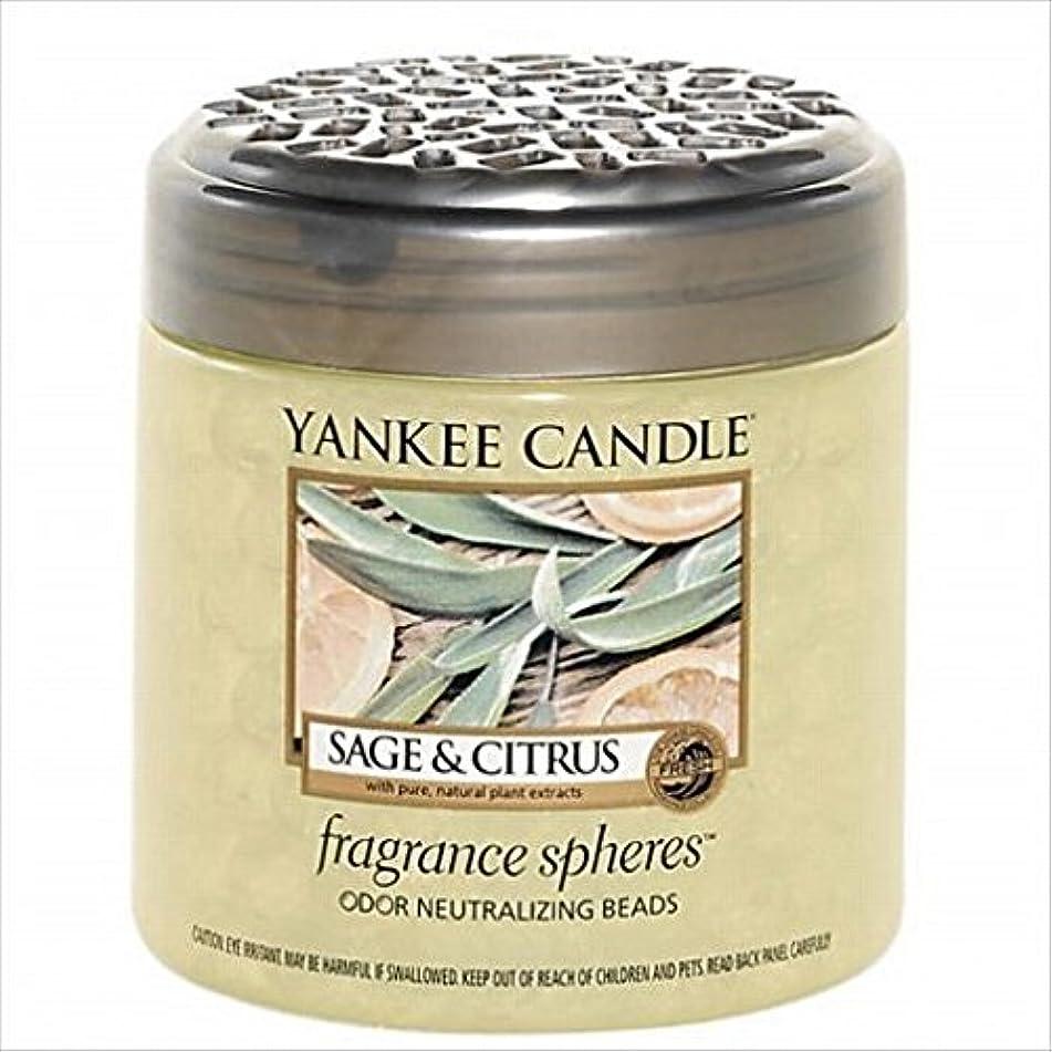 ミニ溶けたシャンパンYANKEE CANDLE(ヤンキーキャンドル) YANKEE CANDLE フレグランスビーズ 「 セージ&シトラス 」(K3300505)